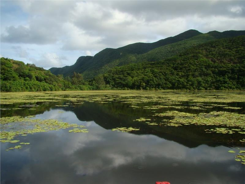 A scenery in Con Dao National Park