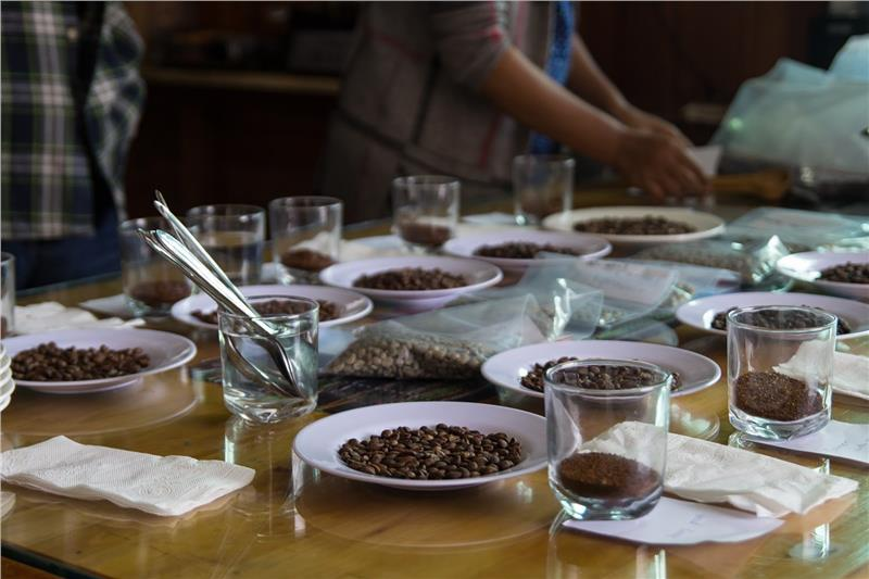 Classify coffee at K'Ho Coffee in Dalat Vietnam
