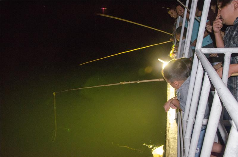 Squid fishing in Halong Bay