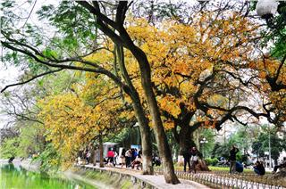 Hanoi autumn - a poem for romantic souls