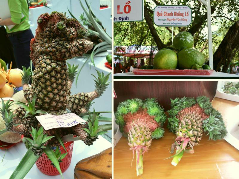 Local extra fruits in Southern Fruit Festival