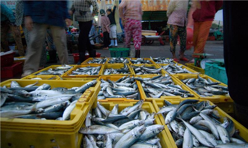Fish market in Phan Thiet