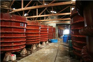 Phu Quoc fish sauce factories