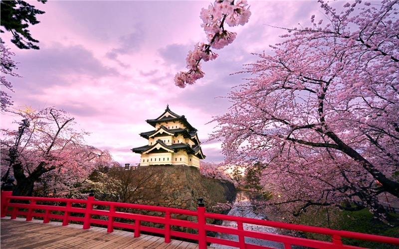 Japan Travel SIM 4G - 4 days - 100GB - SB42