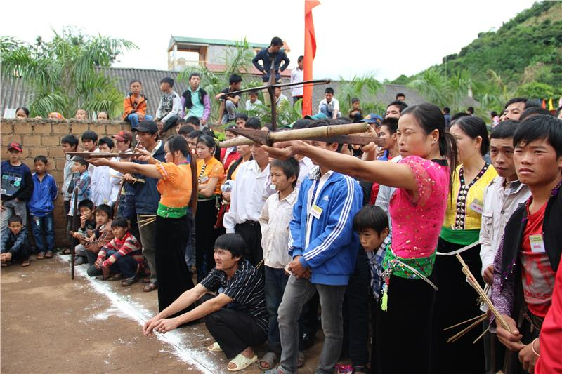 Exciting activities in the festival