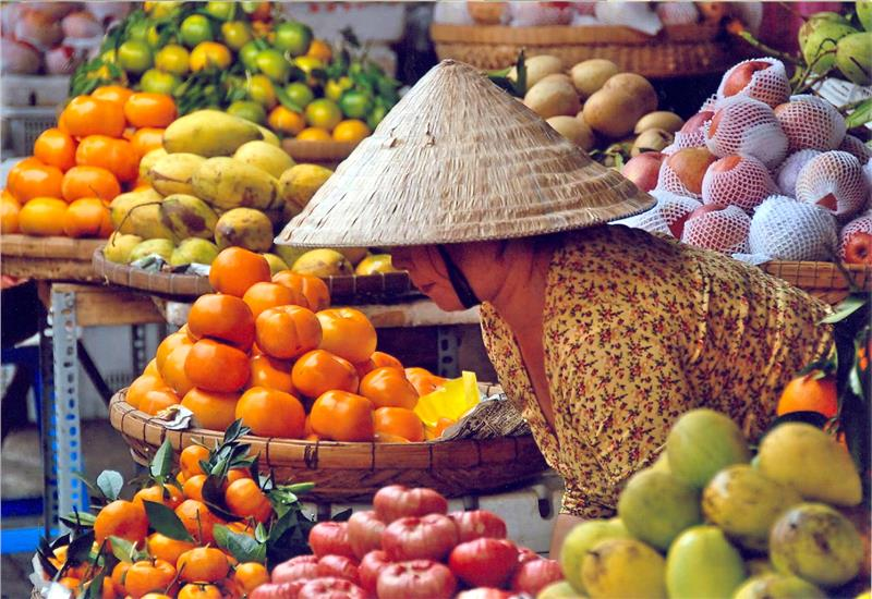 Vietnam fresh fruits