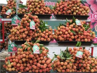 Vietnam fruit appeals world market