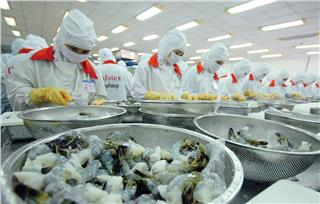 Vietnam enterprises expand shrimp export