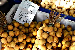 First batch of Vietnam longan exported to the US market