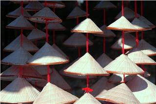 Vietnamese conical hats